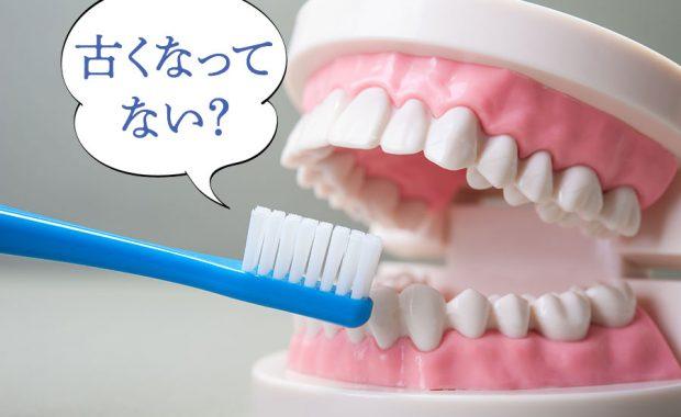 その歯ブラシ、古くなってない?