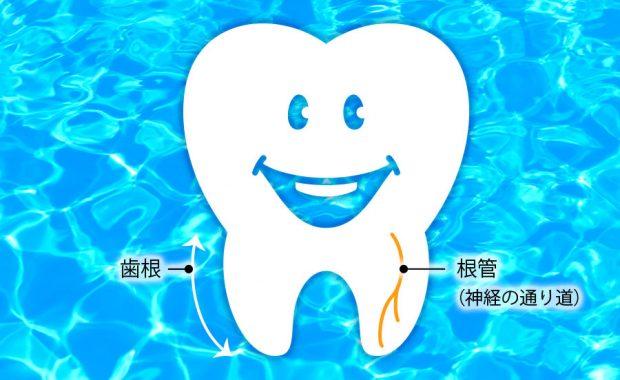 歯の神経を取ったあとの治療