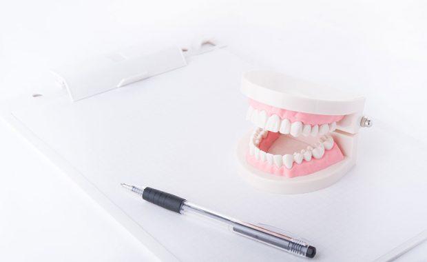 ペンと歯形