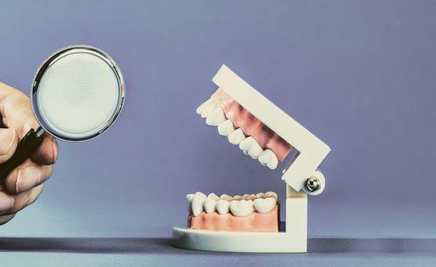 虫眼鏡で歯を調べる
